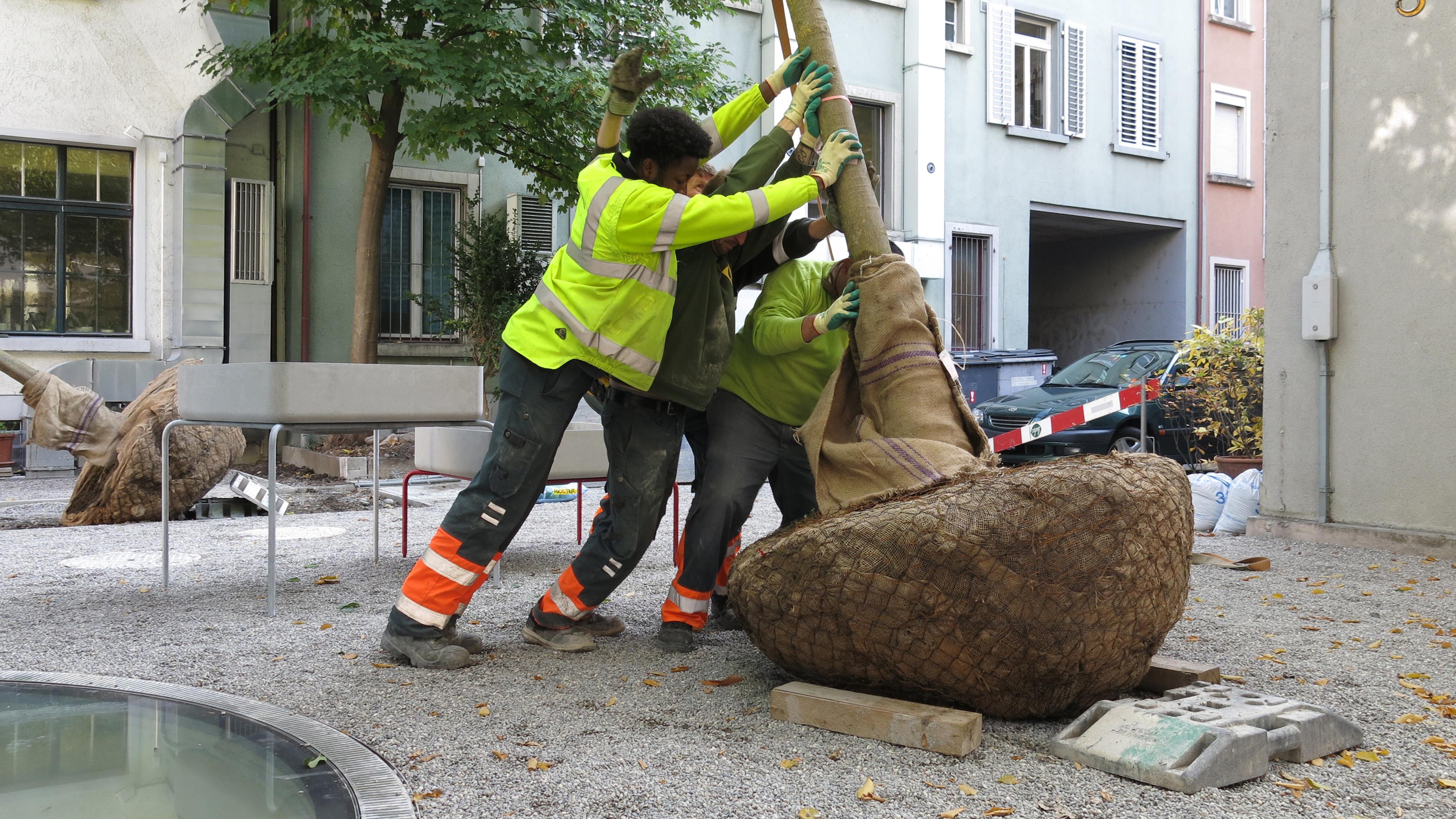 GERSBACH LANDSCHAFTSARCHITEKTUR |NEUBAU HOFGEBÄUDE ST.PETER UND PAUL, Zürich CH